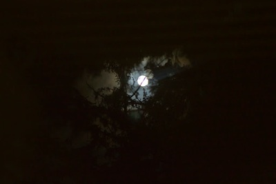 Moonlighting , Mondlicht, Mond