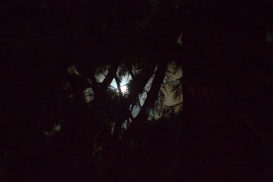 Freiburg Mond