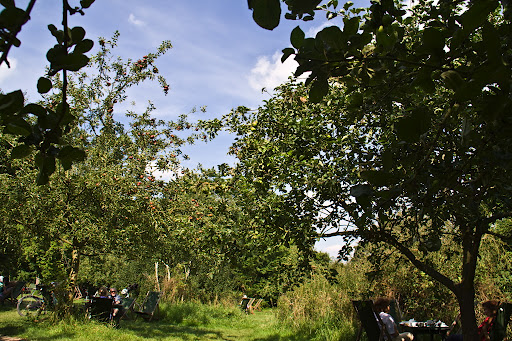 Grantchester Rupert Brooke The Orchard