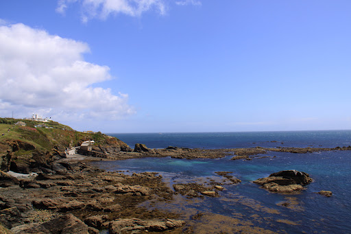 Cornwall Lizard Point
