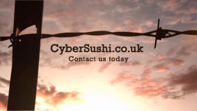 Cyber Sushi