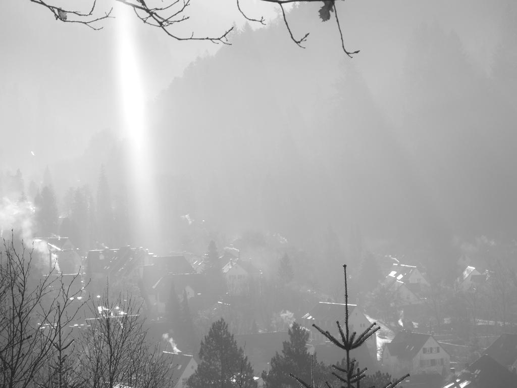 FreiburgNebel_11
