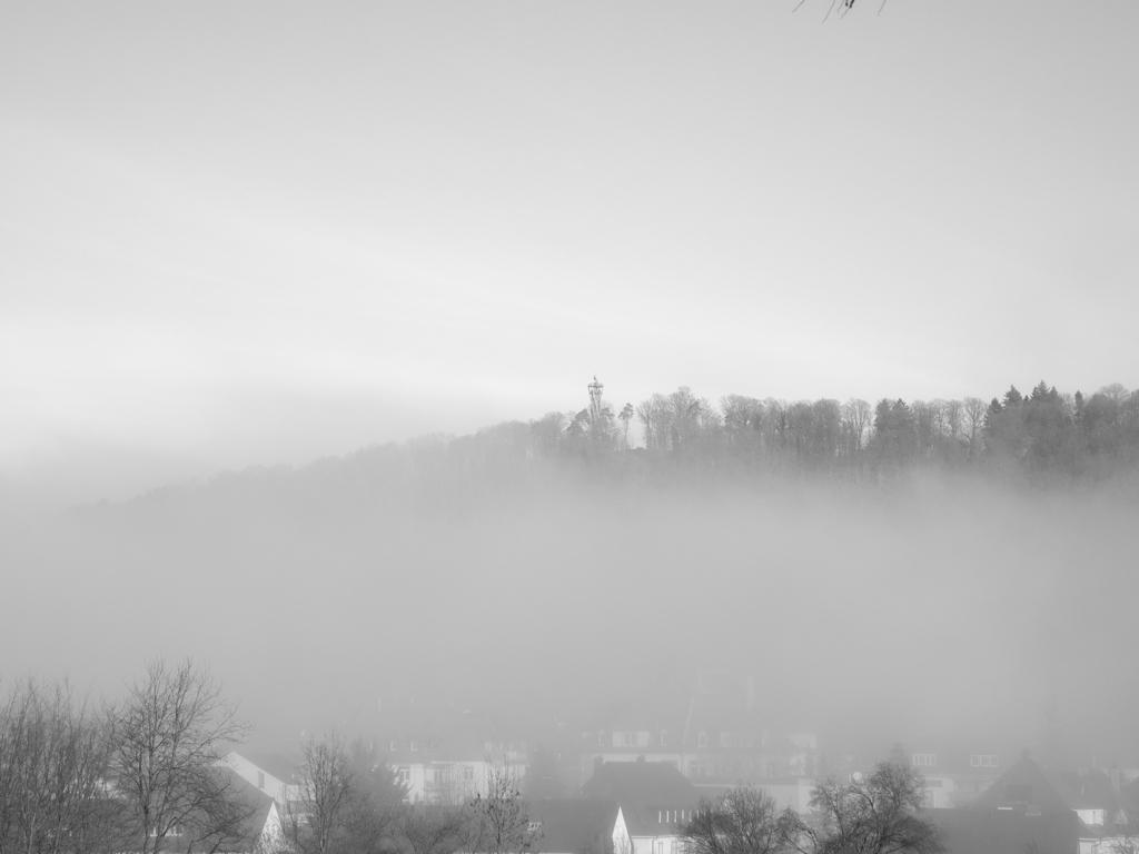 FreiburgNebel_9