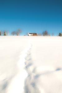 Winter 2015_12