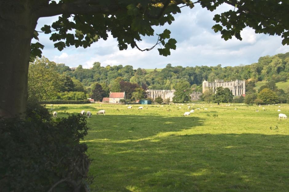 Yorkshire - Rievaulx Abbey - Whitby Abbey