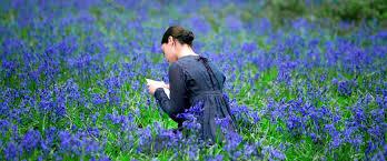 "Abbie Cornish as Fanny Brawne in the film ""Brightstar"""