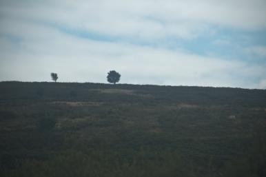 """Yorkshire Moors Railway"""