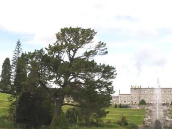 Powerscourt Estate and Gardens - Ireland