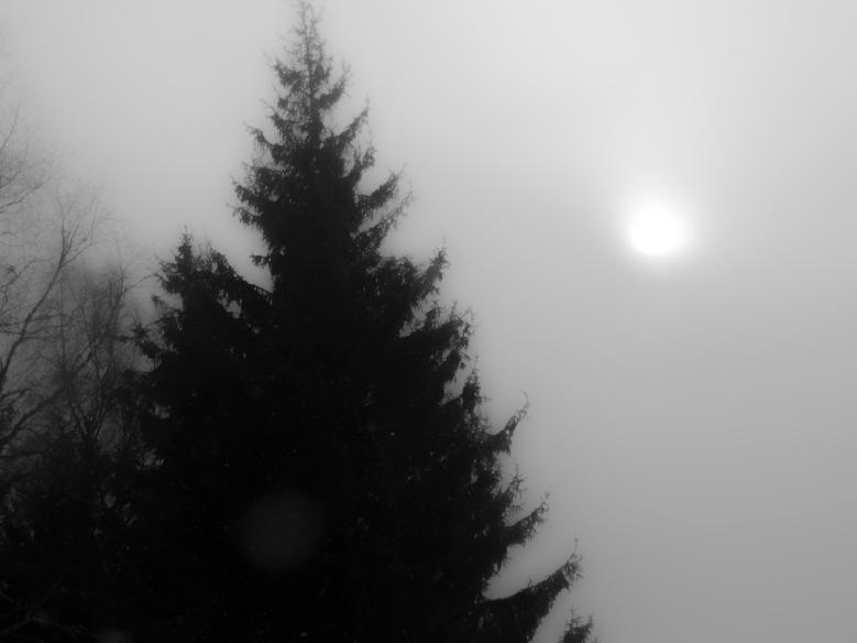 Winter _2018_12
