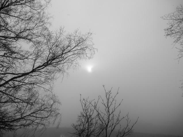 Winter _2018_18