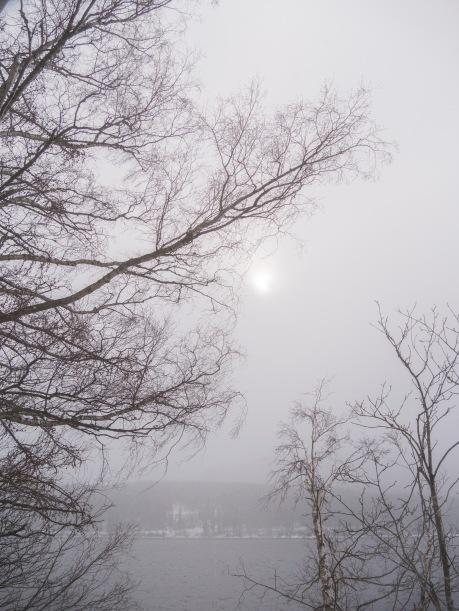 Winter _2018_19