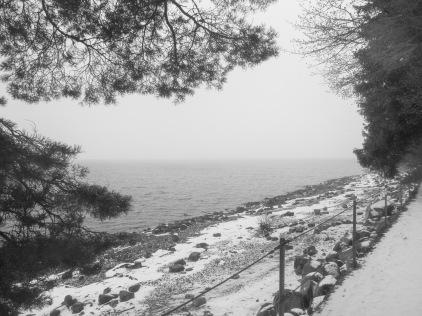 Winter _2018_20