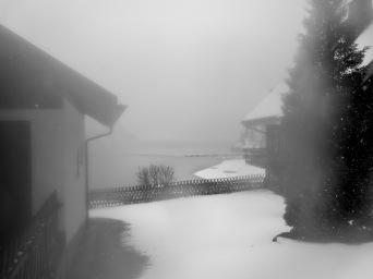 Winter _2018_21