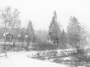 Winter _2018_3
