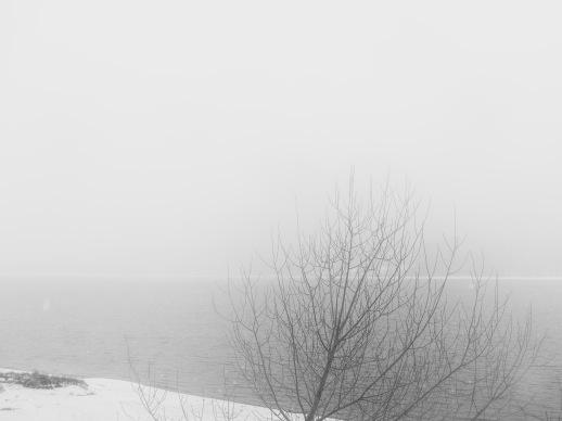 Winter _2018_6