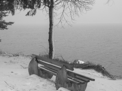 Bank_winter-_2018_15