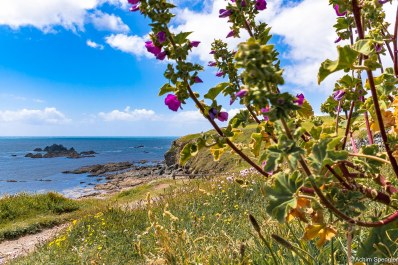 Cornwall_Lizard_Point